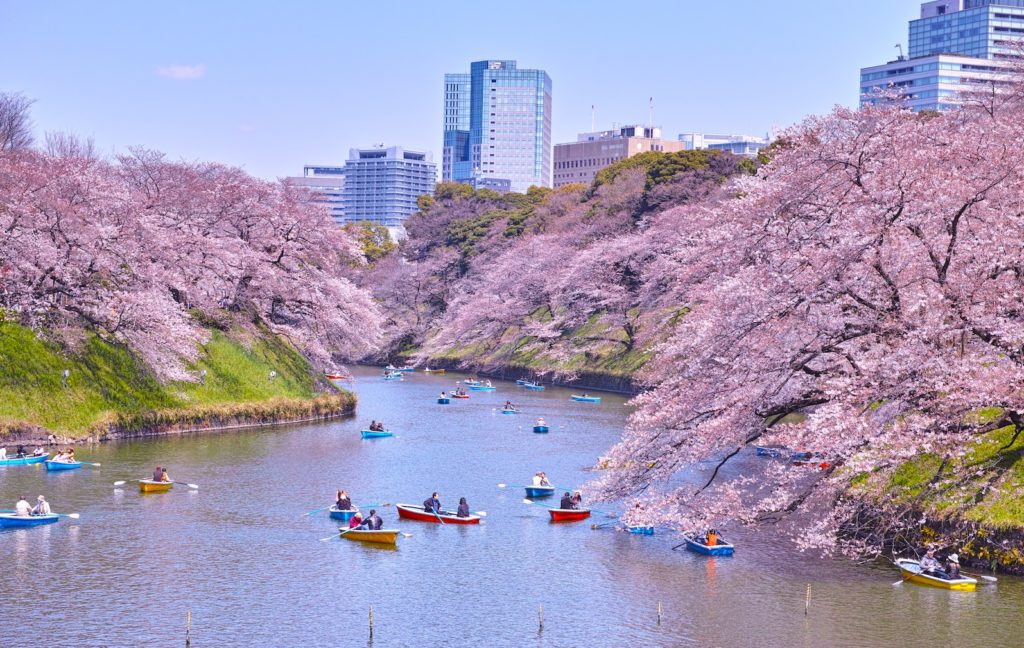 Chidorigafuchi Park Tokyo Japan