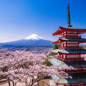 HIS Travel 7D5N Focus Japan