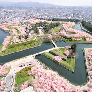 Hokkaido Love Story Japan