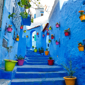 Morocco Chefchaouen (Blue City) Exotic