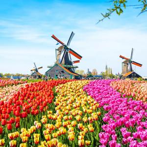 Netherlands Belgium Europe