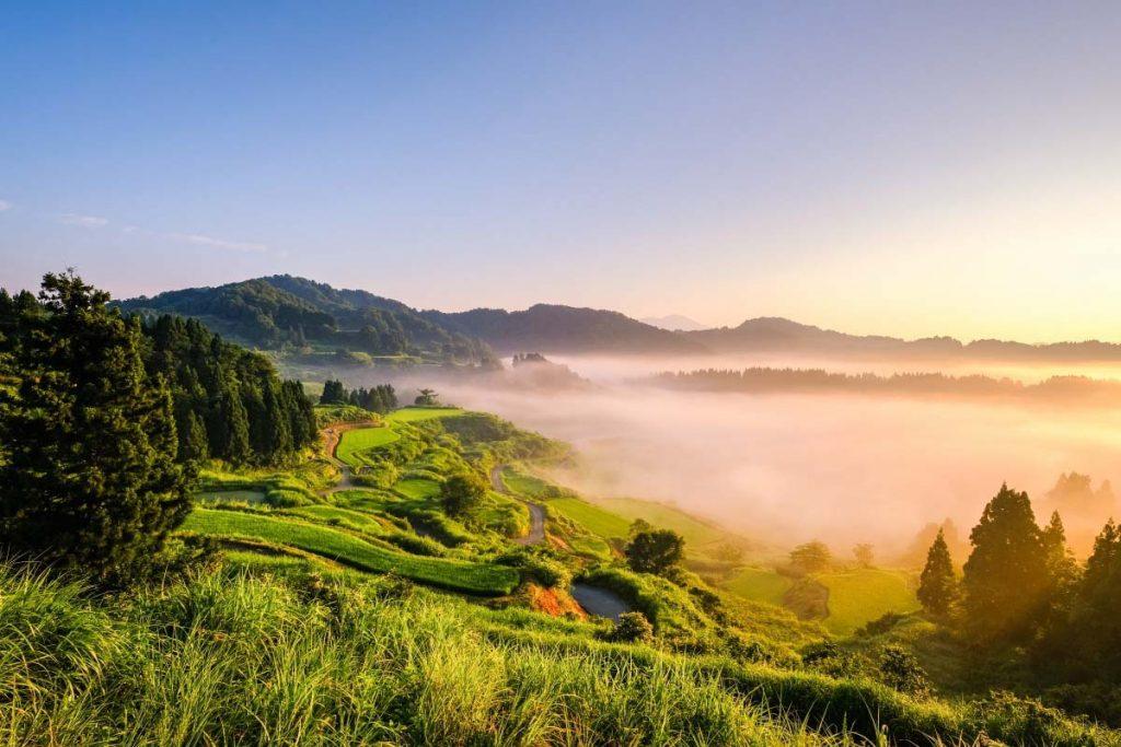 Nagano Niigata Hoshitoge Rice Terraces Japan