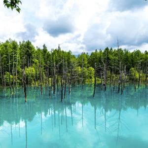 300px x 300px Hokkaido Biei Blue Lake Japan