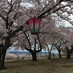 HIS Travel Japan Tottori Castle Ruins