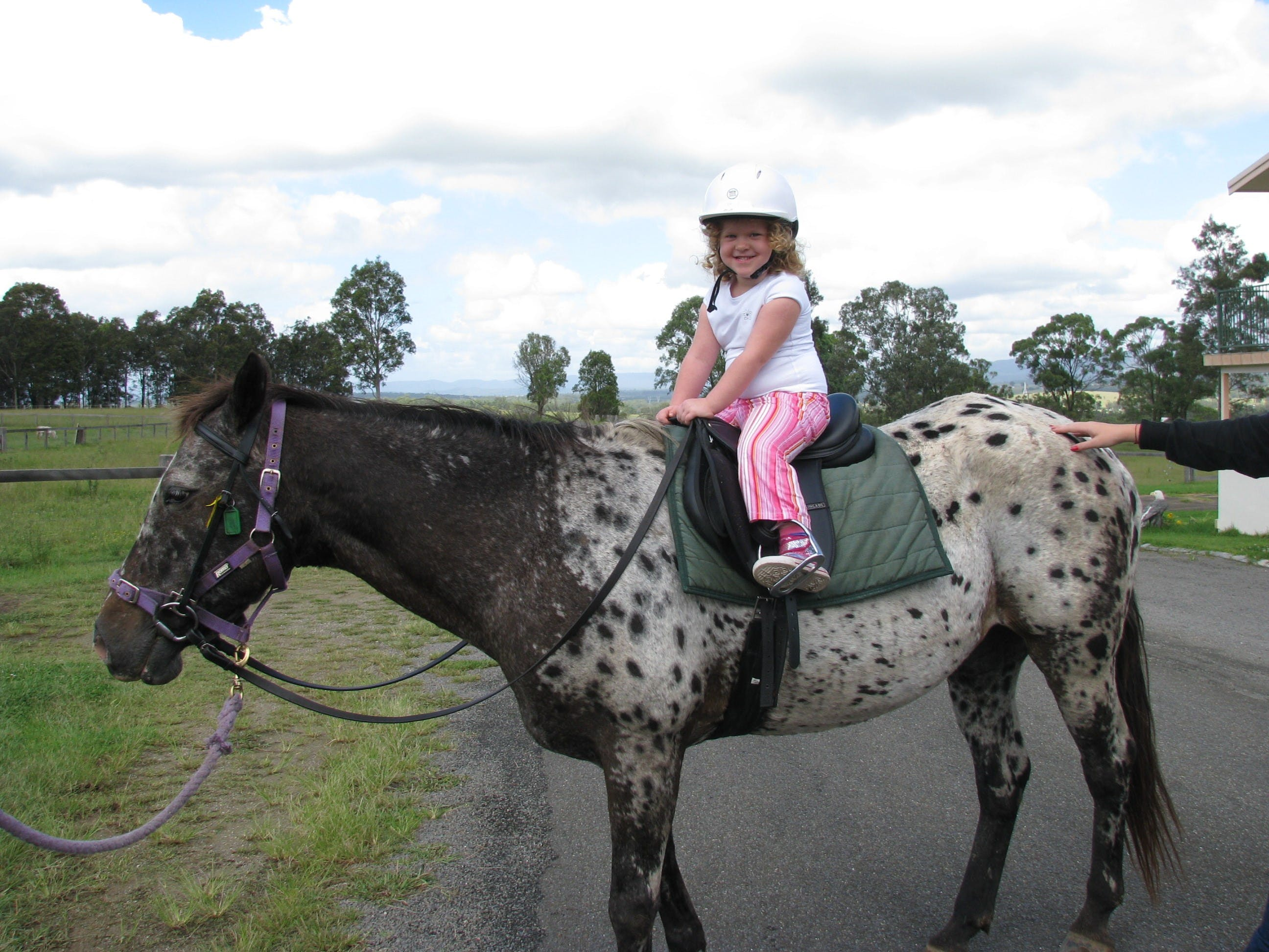 Australia New South Wales Hunter Valley Horse Riding HIS Travel