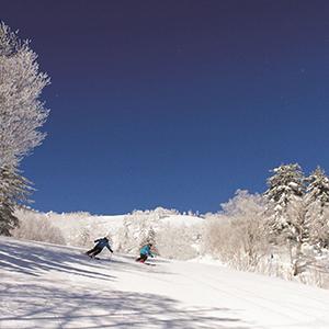 HIS Travel Hokkaido Japan Furano Ski Free & Easy