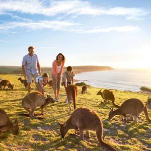 HIS Travel 7D6N South Australia Kangaroo Island