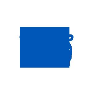 Self Drive Car Icon