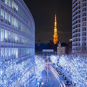 HIS Travel Tokyo Japan Winter Illumination Xmas Christmas