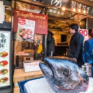 HIS Travel Tokyo Japan Tsukiji Fish Market Virtual Tour